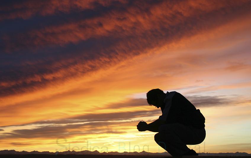 blog digital humildad