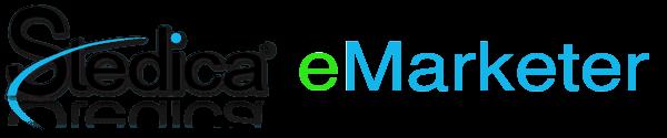 Stedica Logo eMarketer shadow